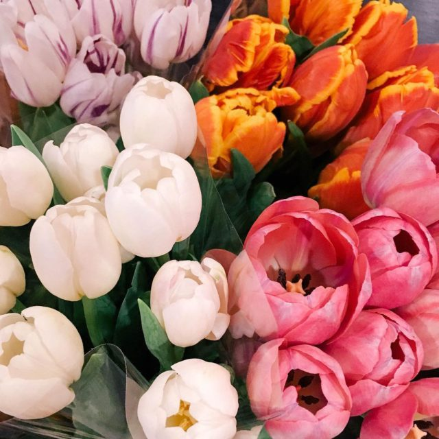 I bought tulips on an whim the other day becausehellip